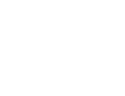 Finnick Group logo